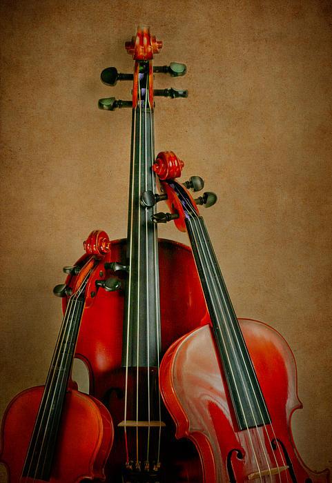 Violin Photograph - Stringed Trio by David and Carol Kelly