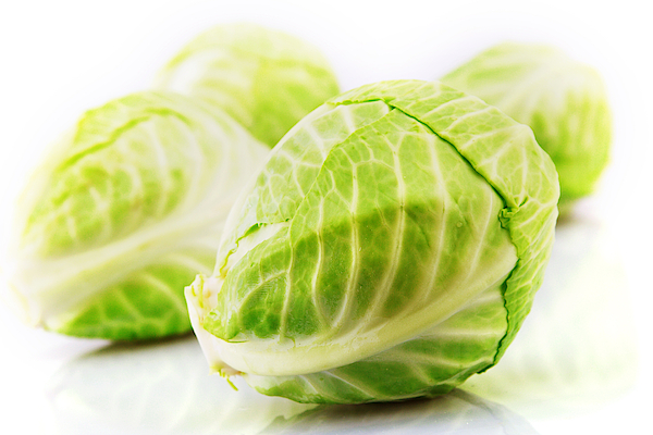 Studio Shot Of A Cabbage Photograph by Visage