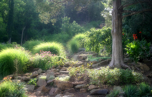 Greenery Photograph - Summer At The Park by Carolyn Fletcher