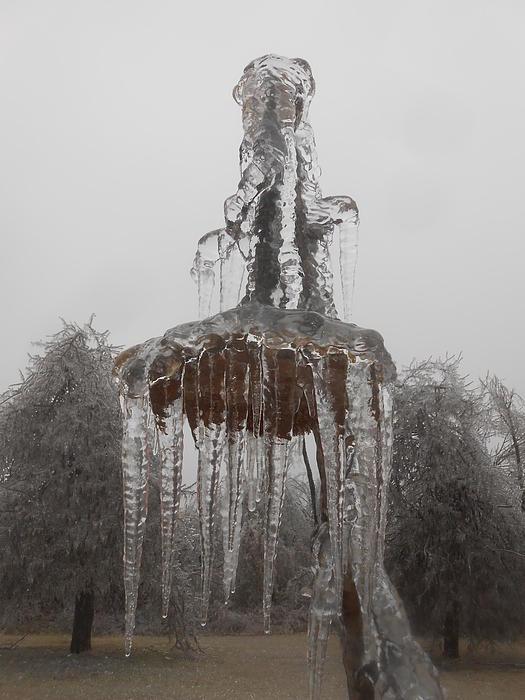 Winter Photograph - Sunflower Ice Princess by Diannah Lynch