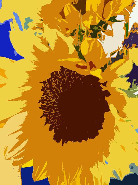 Sunflower Photograph - Sunflower Pop by Colleen Kammerer