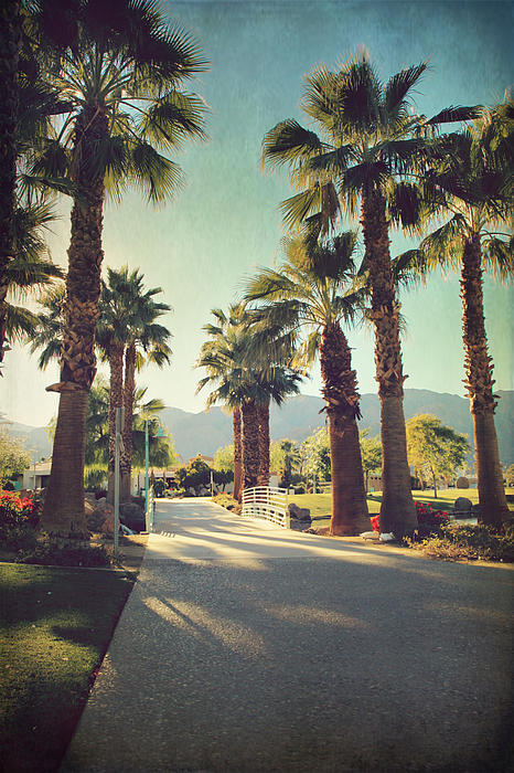 La Quinta Photograph - Sunny Warm Happy by Laurie Search