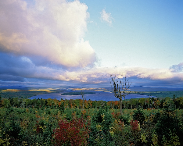Sunrise At Height Of Land Moose Lookmeguntic Lake In The Autumn, Maine, Usa. Photograph by Jeff Foott
