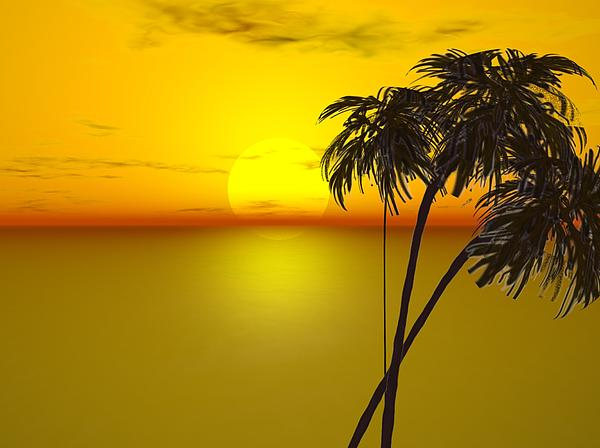 Palms Painting - Sunset And Palms by John Vito Figorito
