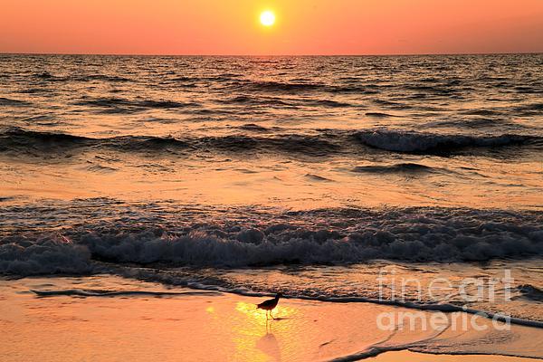 St Joseph Peninsula State Park Photograph - Sunset At St. Joseph by Adam Jewell
