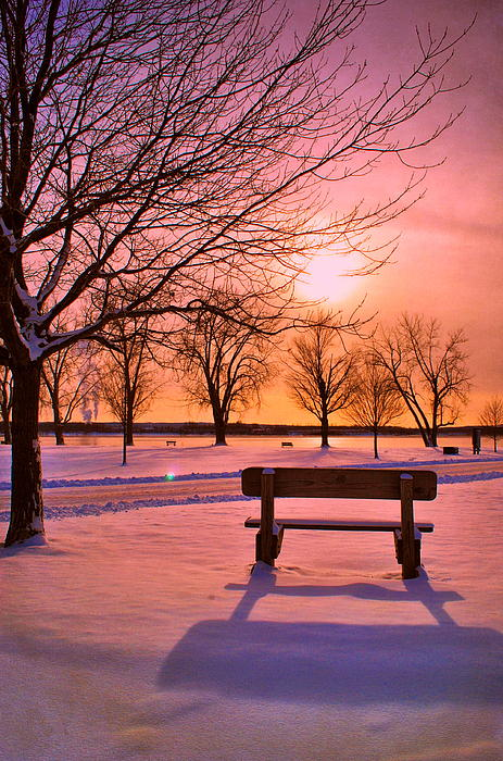 Bench Photograph - Sunset Bench by Emily Stauring