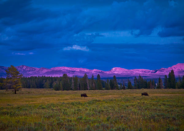 Wyoming Photograph - Sunset In Yellowstone by Kim Michaels