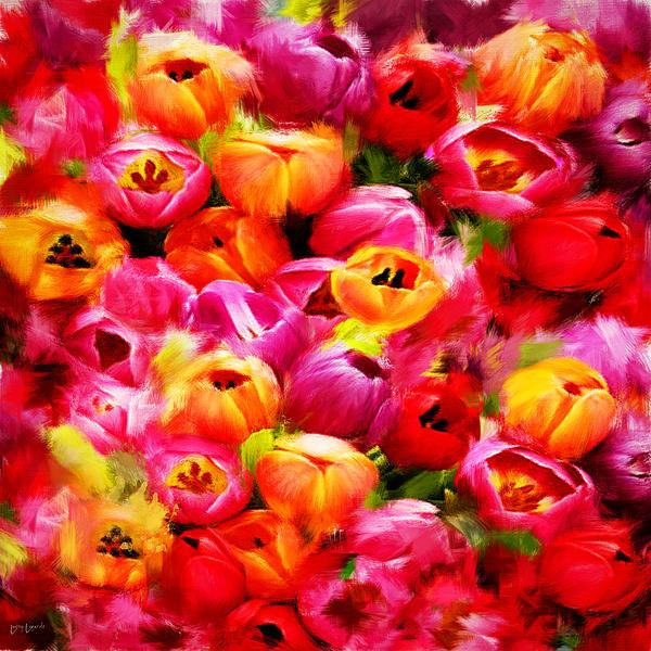 Tulip Photograph - Symbol Of Love by Lourry Legarde