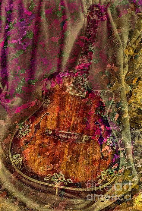 Acoustic Photograph - The Art Of Music by Steven Lebron Langston