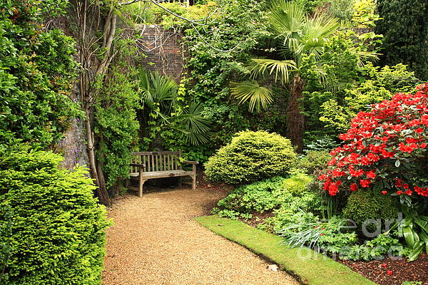 Beautiful Photograph - The Beautiful Garden by Boon Mee