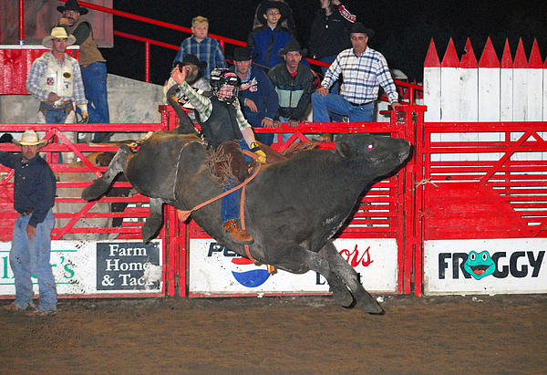 Rodeo Photograph - The Bull Rider by Larry Van Valkenburgh