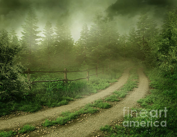 Foggy Road Photograph - The Foggy Road by Boon Mee