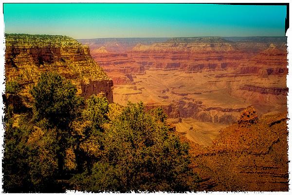 Grand Canyon Photograph - The Grand Canyon Vintage Americana Vii by David Patterson