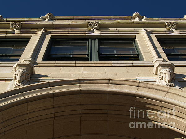 Asheville Photograph - The Grove -- Looking Up by Anna Lisa Yoder