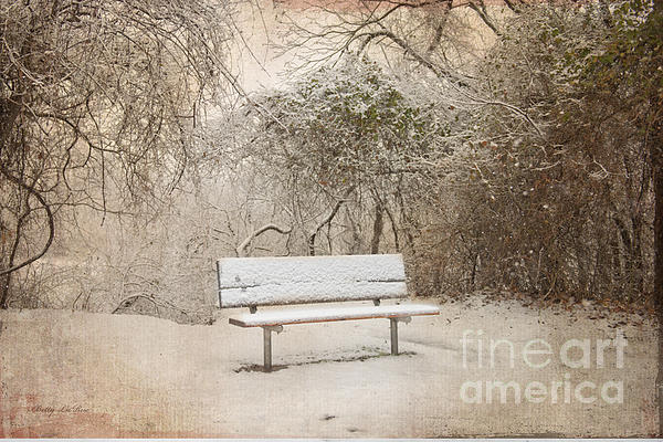 Bench Photograph - The Lonely Bench by Betty LaRue