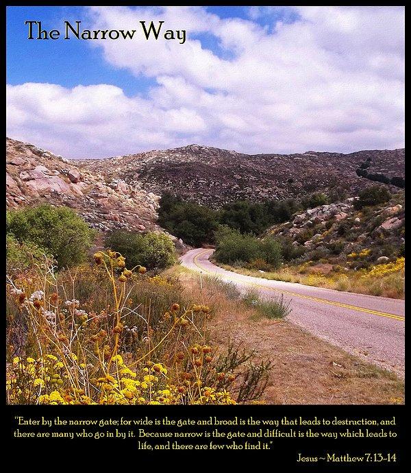 Inspirational Sayings Photograph - The Narrow Way by Glenn McCarthy Art and Photography