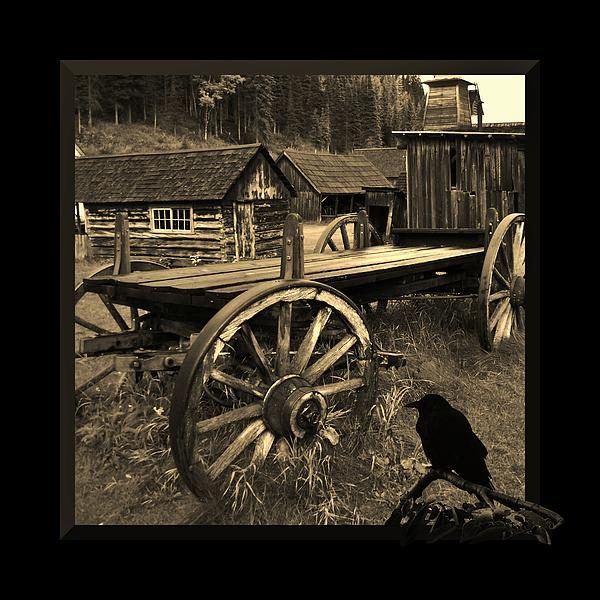 Western Photograph - The Raven Flies Straight by Barbara St Jean