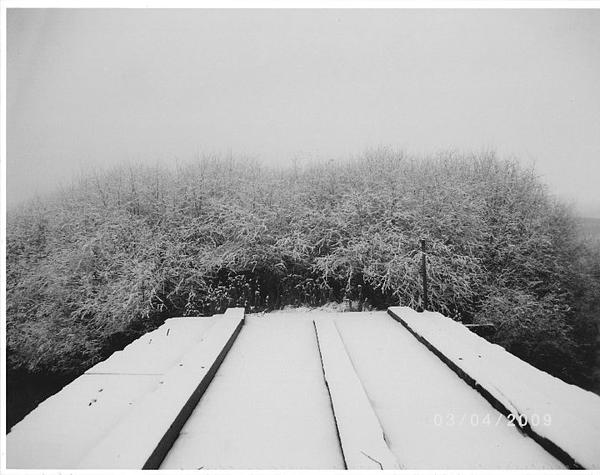 Winter Photograph - The Silence Of Winter by James Rishel