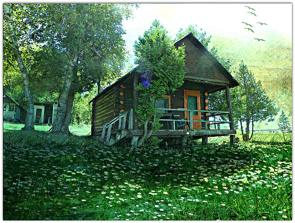 The Summer Cabin Photograph by Dianne  Lacourciere