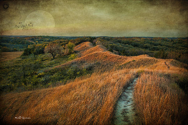 Loess Hills Photograph - The Trailhead by Jeff Swanson