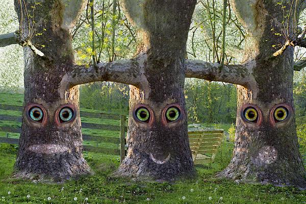 Trees Digital Art - Three Trees by Betsy Knapp