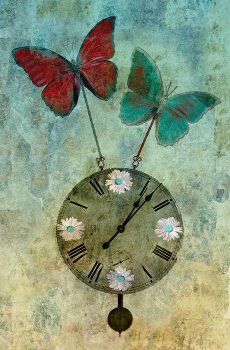 Butterflies Photograph - Time Flies by Aimelle