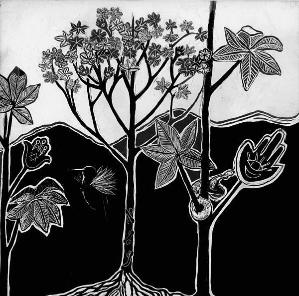 Landscape Drawing - Tree Of Life by Aurora Levins Morales
