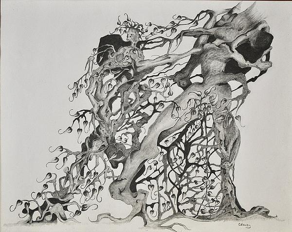 Tree Drawing - Tree People by Glenn Calloway