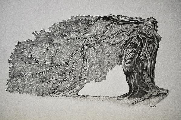 Tree Drawing - Tree With Faces by Glenn Calloway