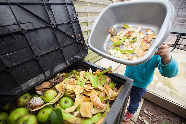 Trip To Compost Bin Photograph by Paul Mansfield Photography