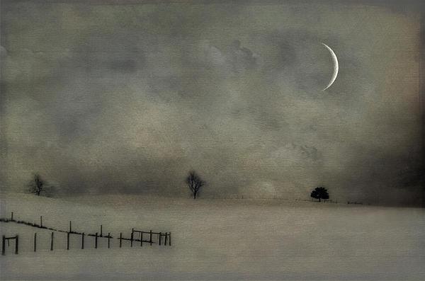 Snow Photograph - Twilight by Kathy Jennings