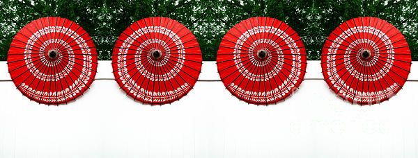 Abstract Photograph - Umbrellas On A Fence by Amy Cicconi