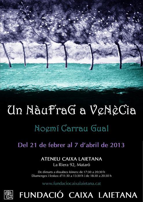 Un Naufrag A Venezia - Mostra Art Jove - Febrer 2013 Mataro - Barcelona Drawing by Arte Venezia