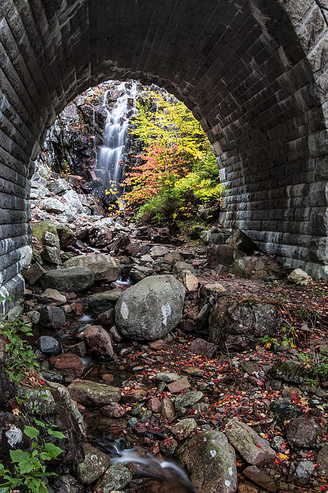 Vertical Photograph - Under The Road by Jon Glaser