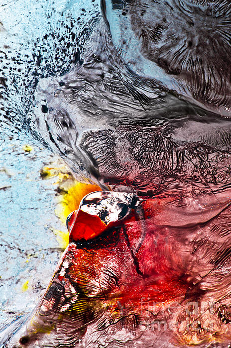 Abstract Photograph - Underworld Feeding Ground by Petros Yiannakas