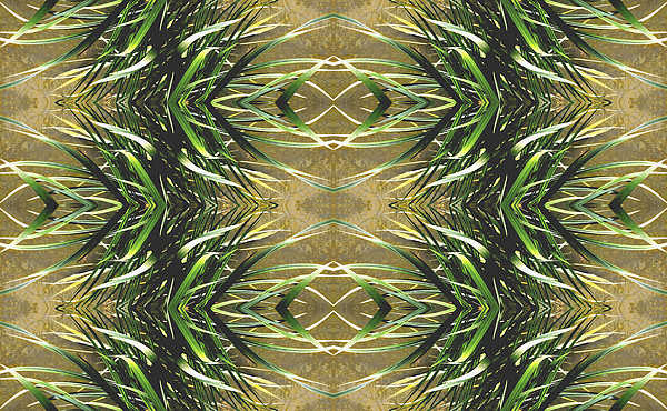 Kaleidoscopic Photograph - Unnatural 16 by Giovanni Cafagna