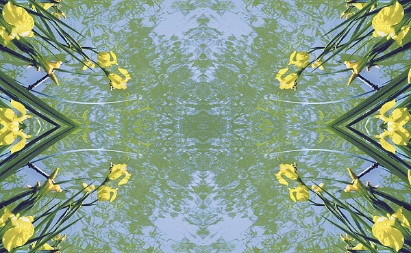 Kaleidoscopic Photograph - Unnatural 17 by Giovanni Cafagna