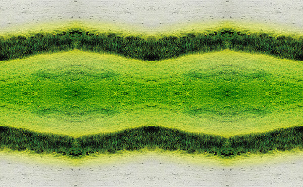 Abstract Photograph - Unnatural 2.1 by Giovanni Cafagna
