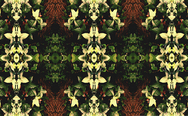 Kaleidoscopic Photograph - Unnatural 43 by Giovanni Cafagna
