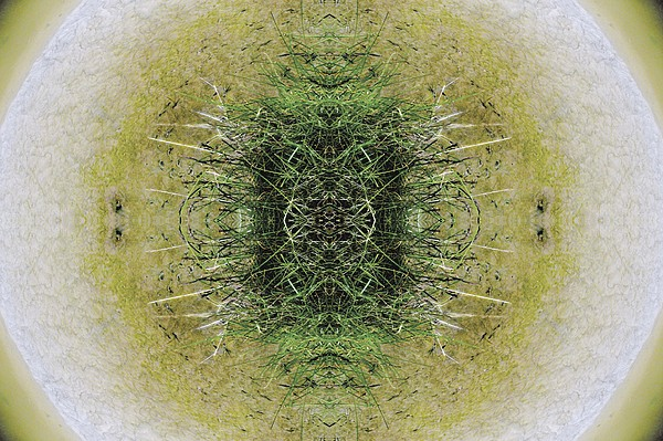 Kaleidoscopic Photograph - Unnatural 6.1 by Giovanni Cafagna
