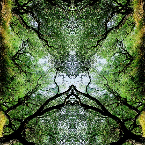 Kaleidoscopic Photograph - Unnatural 75 by Giovanni Cafagna