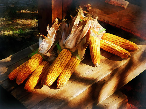 Corn Photograph - Vegetable - Corn On The Cob At Outdoor Market by Susan Savad