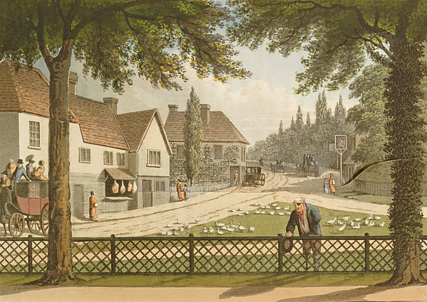 Road Drawing - View From My Own Cottage In Essex by Humphry Repton