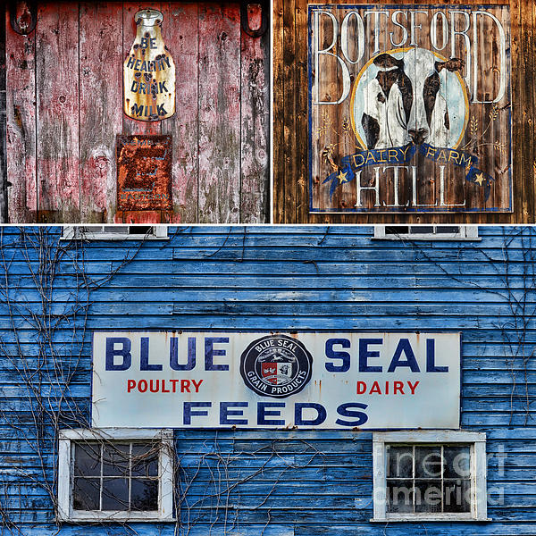 Farm Photograph - Vintage Farm Signs by Sabine Jacobs