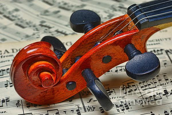 Paul Ward Photograph - Violin Scroll Up Close by Paul Ward