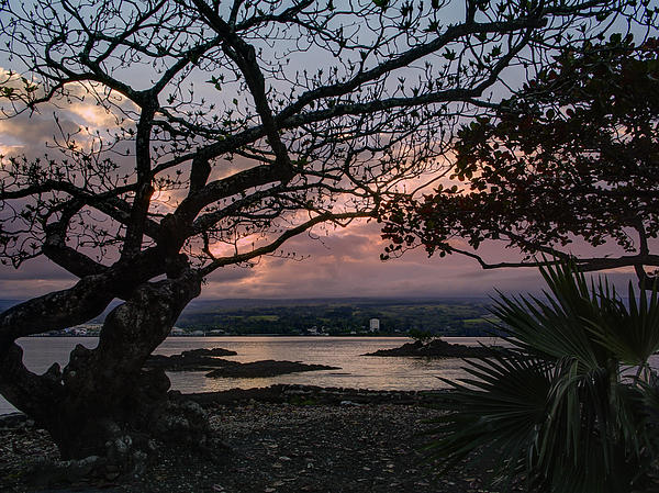 Volcanic Photograph - Volcanic Sunset On Hilo Bay - Big Island by Daniel Hagerman