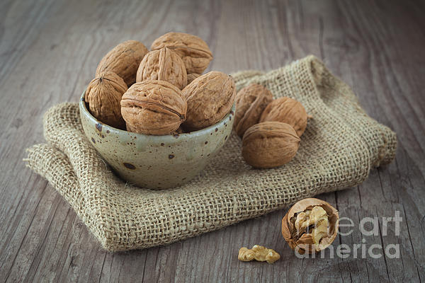 Autumn Photograph - Walnuts by Sabino Parente