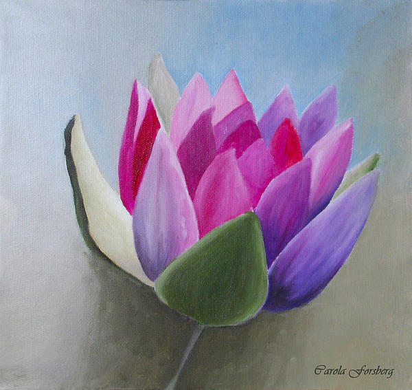 Flower Painting - Waterlily by Carola Ann-Margret Forsberg