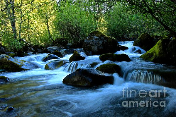 Fine Art Tim Rice Photograph - Waters Majestic by Tim Rice