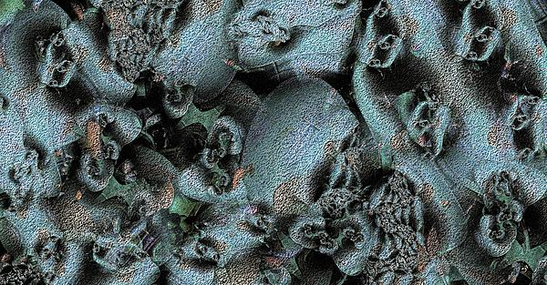 Abstract Digital Art - Weathered by Ron Bissett